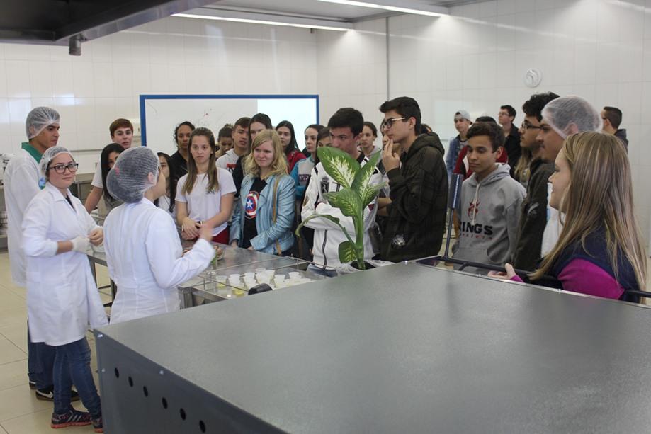 Estudantes falaram sobre a diversidade de formas e usos pelo homem das algas, fungos e plantas