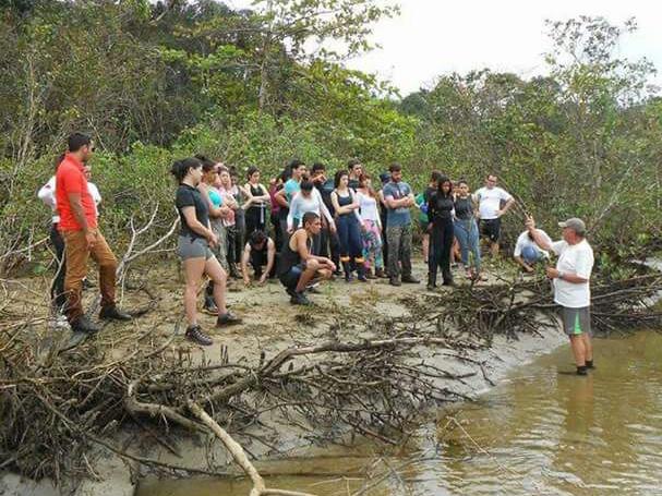 Aula no manguezal