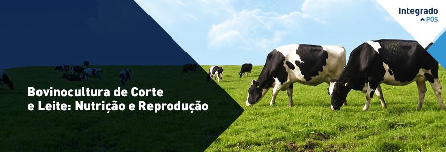 Bovinocultura de Corte e Leite: Nutrição e Reprodução