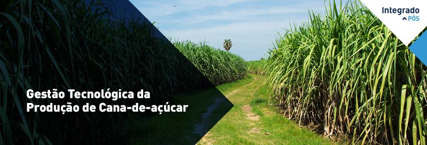 Gestão Tecnológica da Produção de Cana-de-açúcar